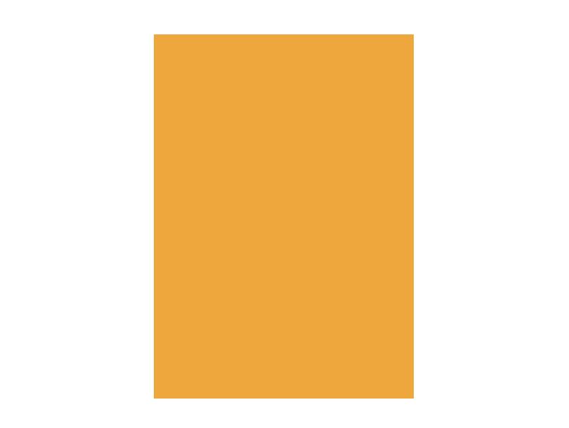 veteran orange icon